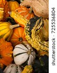 Small photo of Good Gourds Almighty