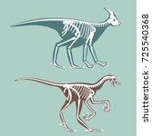dinosaurs skeletons silhouettes ... | Shutterstock .eps vector #725540368