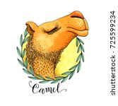 Colored Camel's Head In A...