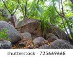 trail around la digue island...   Shutterstock . vector #725669668
