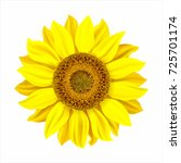 realistic sunflower isolated on ... | Shutterstock .eps vector #725701174