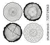 tree rings. set of cross... | Shutterstock . vector #725719063