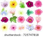 flower set | Shutterstock .eps vector #725747818