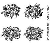 flower set   Shutterstock . vector #725747824