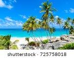 bottom bay  barbados   paradise ... | Shutterstock . vector #725758018