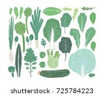hand drawn salad greens and... | Shutterstock .eps vector #725784223