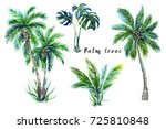 palm trees  tropical leaves ... | Shutterstock . vector #725810848