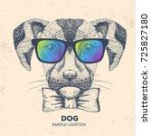 hipster animal dog. hand... | Shutterstock .eps vector #725827180