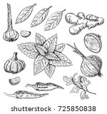 vector ink hand drawn style set ... | Shutterstock .eps vector #725850838