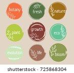 color circle brush stroke... | Shutterstock .eps vector #725868304