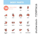 body parts   set of modern... | Shutterstock .eps vector #725895616