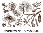vector collection of hand drawn ...   Shutterstock .eps vector #725958838