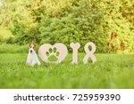 adorable wire fox terrier... | Shutterstock . vector #725959390
