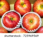 red apple wrapped with foam... | Shutterstock . vector #725969569