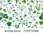 summer herbs  flowers and...