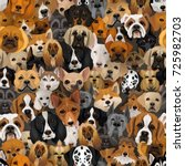 Stock vector vector dogs different breeds seamless pattern or wrapping paper year of dog background with 725982703