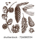 vector collection of hand drawn ... | Shutterstock .eps vector #726080554