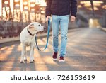 Stock photo morning walk with dog young man with his labrador retriever on the iron bridge at the sunrise 726153619