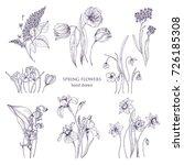 set of gorgeous botanical... | Shutterstock .eps vector #726185308