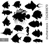 most popular sea fishes... | Shutterstock .eps vector #726283870