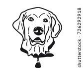 portrait of labrador retriever...   Shutterstock .eps vector #726292918