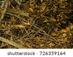 autumn . leaves on the ground... | Shutterstock . vector #726359164