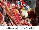 baby llama  pisac  inca sacred... | Shutterstock . vector #726417388