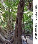 wat pa kham chanod | Shutterstock . vector #726697108