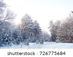 beautiful winter snow forest... | Shutterstock . vector #726775684