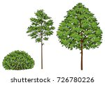 cartoon trees and bush. a set... | Shutterstock .eps vector #726780226