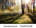 sunny autumn nature background ... | Shutterstock . vector #726855268
