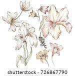 watercolor flower set | Shutterstock . vector #726867790
