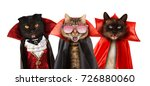 funny cats are celebrating a... | Shutterstock . vector #726880060