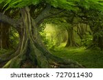 tropical jungle | Shutterstock . vector #727011430
