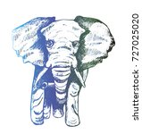 illustration of an elephant... | Shutterstock .eps vector #727025020