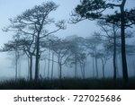 a landscape photograph of thai...   Shutterstock . vector #727025686