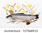 fresh raw salmon red fish ... | Shutterstock . vector #727068913