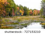 Small photo of Trees ablaze with fall colors wind around the edge of a shallow pond/wetland area. Reds, orange, goldenrod and green fill your eyes with color!