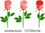 set of three roses with green... | Shutterstock .eps vector #727206136