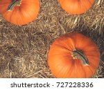 rustic fall pumpkins and hay... | Shutterstock . vector #727228336