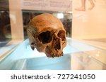 Small photo of KALASIN, THAILAND - JULY 9, 2017 : Human Skull (Homo sapiens) at Sirindhorn Museum of Nature and Science. Natural Sciences Dinosaur Fossils