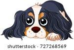 illustration of cavalier king... | Shutterstock .eps vector #727268569