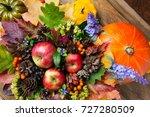ripe red apples  cones ...   Shutterstock . vector #727280509