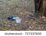 blue and gray cotton jumper... | Shutterstock . vector #727337830