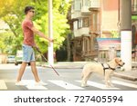 guide dog helping blind man on... | Shutterstock . vector #727405594
