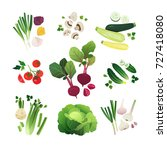 vegetable set of onion ... | Shutterstock .eps vector #727418080
