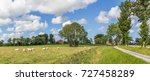 panorama of sheep in a dutch... | Shutterstock . vector #727458289