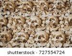 human skulls and bones in the...   Shutterstock . vector #727554724