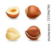 hazelnuts set realistic vector | Shutterstock .eps vector #727596790