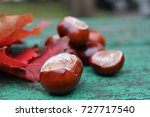 Chestnuts With Maple Leaves On...